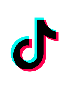 All You Need to Know About TikTok